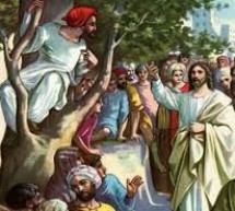 A procura de Jesus